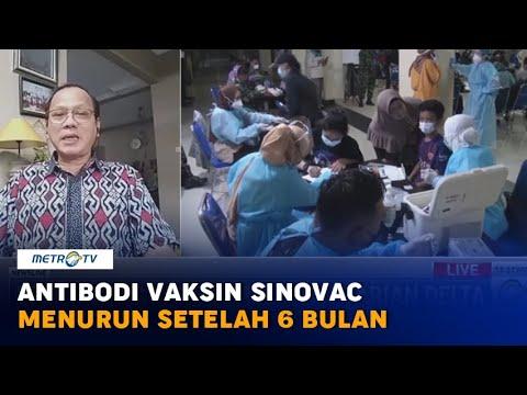 Antibodi Vaksin Sinovac Menurun Setelah 6 Bulan, Ini Kata Epidemiolog