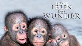 Unser Leben das Wunder (2012) [Dokumentation]   Film (deutsch)