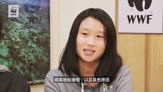 Audrey Tam是香港加拿大國際學校的第十級學生。