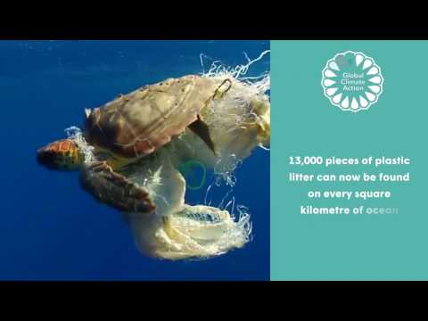 Global Climate Action on Oceans at COP22