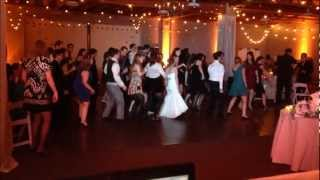 STRAWBERRY FARMS Wedding DJ Gig Log in Irvine, CA with Uplighting