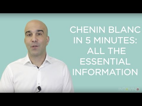 wine article Chenin Blanc in 5 Minutes All The Essential Information