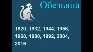 Год обезьяны, гороскоп составленный психологом Натальей Кучеренко.