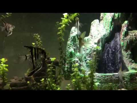aquarium sandfall unterwasser wasserfall youtube. Black Bedroom Furniture Sets. Home Design Ideas