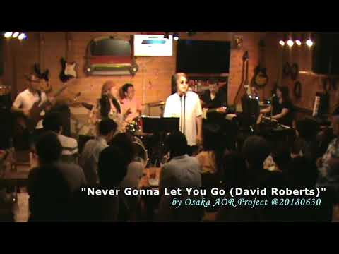 Never Gonna Let You Go - David Roberts (by Osaka AOR Project)