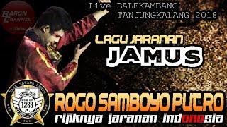 Download lagu Solah Rijik Sam AMBOEN - JAMUS Cover Voc IKA Lovers ROGO SAMBOYO PUTRO Live TANJUNGKALANG 2018