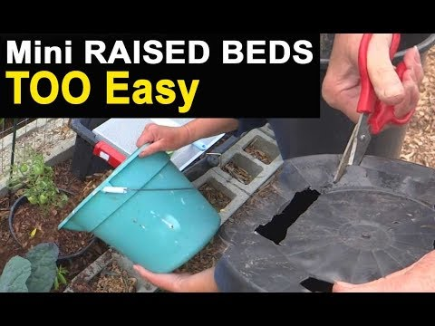 Container Gardening Mini Raised Beds Helps Stop Gophers, Retain Water