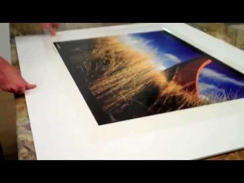 Acrylic (Plexiglass) Face Mounted Prints by Bumblejax