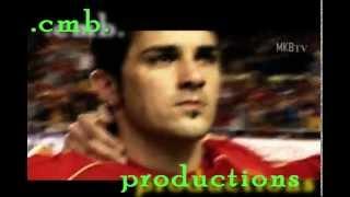Das Sturmduo: Fernando Torres und David Villa
