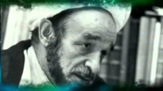 allameh jafari/ singer: farid salavati