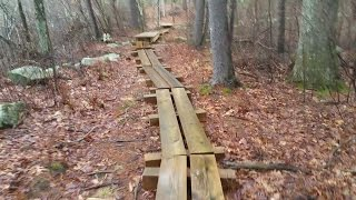 Midstate trail, Douglas state forest in Massachusetts