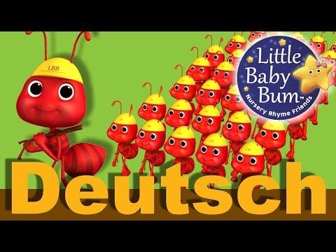 Die Ameisen marschieren   Kinderlieder   LittleBabyBum