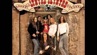 Lynyrd Skynyrd - Free Bird (Live)