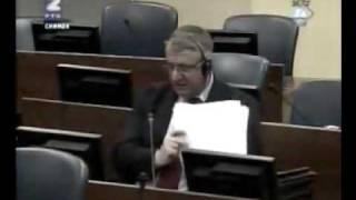 Vojislav Šešelj i ekspert Gušalić 11/11