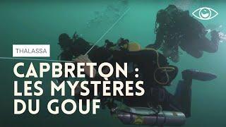 Les mystères du Gouf de Capbreton (reportage complet) - Thalassa