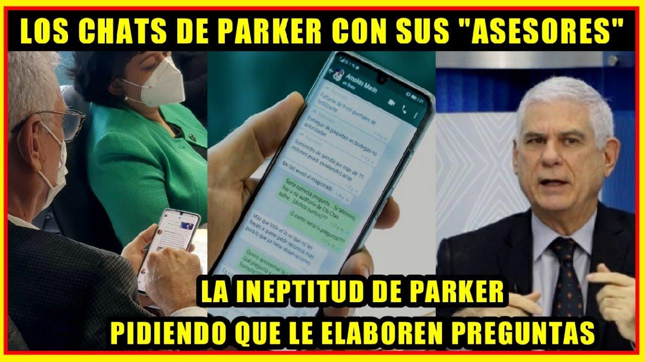 INEPTITUD DE RODOLFO PARKER: Chat con el asesor y la información de un magistrado