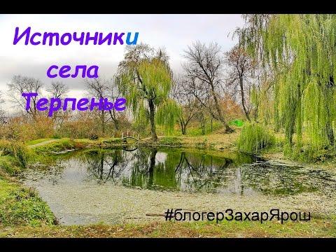 Целебные источники и дуб в селе Терпенье родники #блогерЗахарЯрош