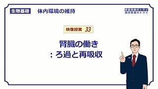 【生物基礎】 体内環境の維持33 腎臓の働き:ろ過と再吸収 (13分)