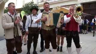 Koralm-Trio, Aufsteirern Graz  20.9.2015-56k © OlmHERZ