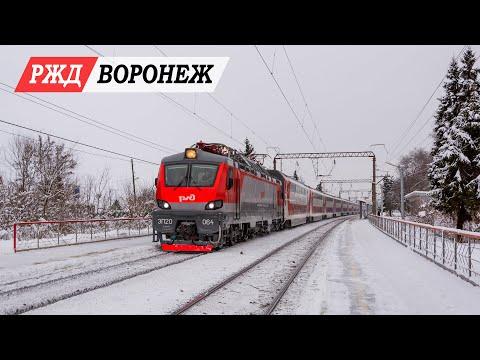 Новогодняя видеоохота в Воронеже 01.01.2019 г.