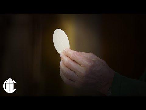 Catholic Sunday Mass: 10/6/19 | Twenty-Seventh Sunday in Ordinary Time