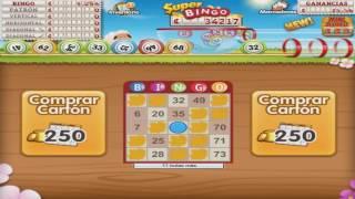 GamePoint Bingo Manual 250