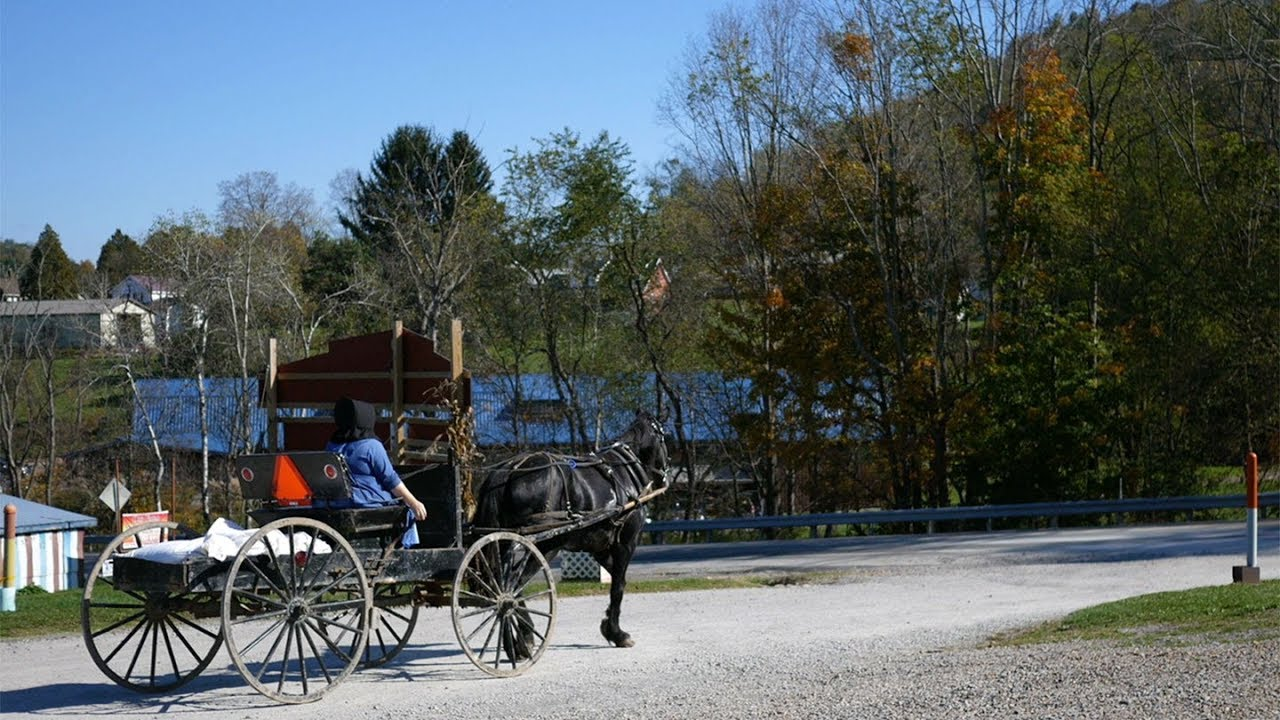 Is the Fountain of Youth in Amish Genes?