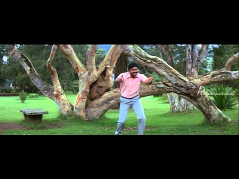 Varnajalam - Pinju Mazhai Charal Song