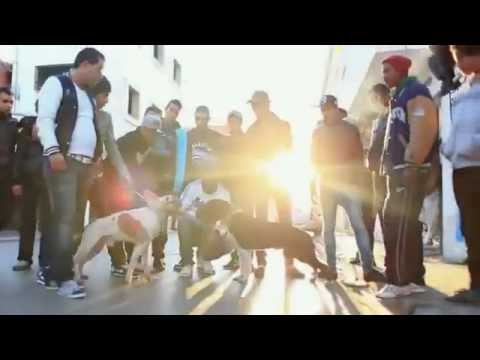 North African RAP from Tunis (2013) زمقتال
