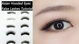 False Lashes Tutorial For Beginners: How to Choose and Apply False Lashes for Asian Hooded Eyes