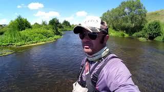 Трудовая ловля голавля в июле