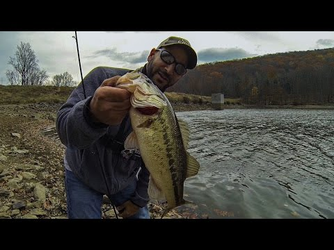 FALL BASS FISHING FROM SHORE (I BROUGHT AN ARSENAL!!!) POWER & FINESSE
