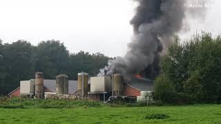 Grote brand in varkensschuur in Mantinge 17-9-2021