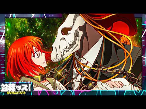 The Ancient Magus Bride: The Story You Never Knew
