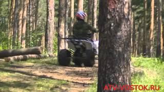 ATV Grom 110cc(Подростковый, спортивный квадроцикл, объемом двигателя 110 см3 и полуавтоматической коробкой передач с реве..., 2014-11-14T08:09:20.000Z)