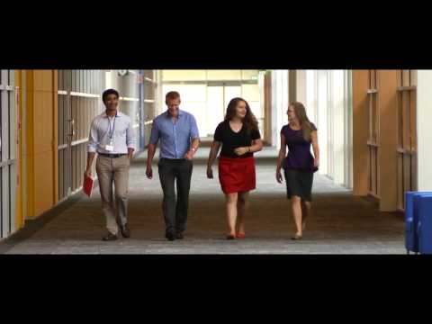 Life At Fisher & Paykel Healthcare