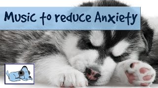 Music to Help Dogs Through Thunderstorms - Reduces Anxiety and Cryi...