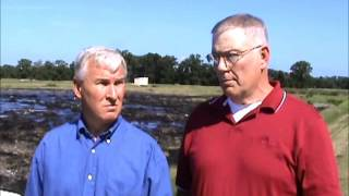 Wayne Farms stresses poultry wastewater process control
