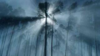 Fog - We
