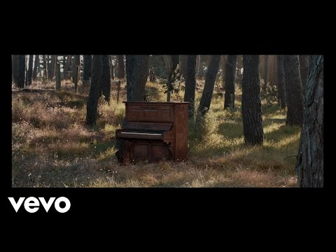 Jamie McDell - Moon Shines Red (Wild Video)