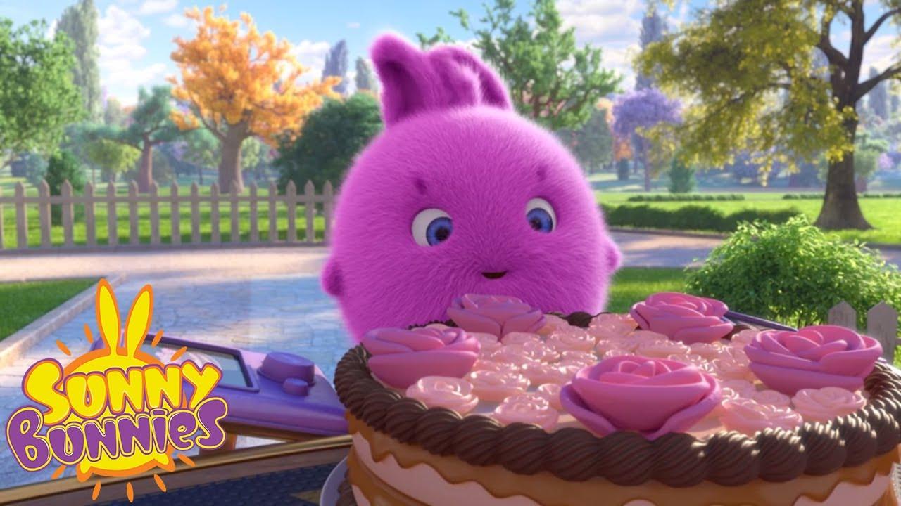 Cartoons For Children Sunny Bunnies Elusive Cake New