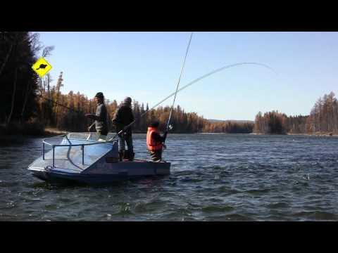 рыбалка в туве на тайменя