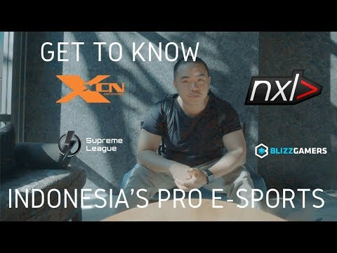 Discovering Indonesia's pro e-sports teams and their gaming houses