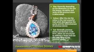 What is Precious Stone?