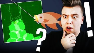 RYBA WIDMO? CO TO MA BYĆ! (Cat Goes Fishing #40)