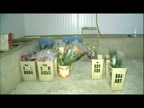 Paralisação dos caminhoneiros causa prejuízo para produtores de flores