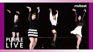 [with mubeat] Purple LIVE / Dance cover. BLACKPINK - 'Forever Young' (Cover by HEYGIRLS)