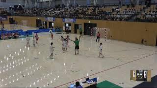 2018IH ハンドボール女子 準々決勝 佼成学園女子(東京都)対 高岡向陵(富山県)