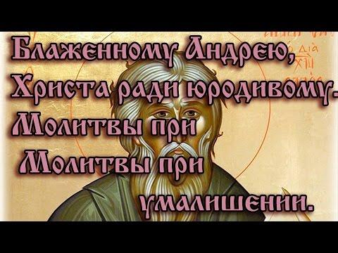 Диану Шурыгину и ее семью в -