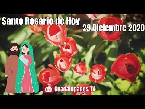 Rosario A La Virgen De Guadalupe De Hoy Martes 29 De Diciembre 2020 Misterios Dolorosos